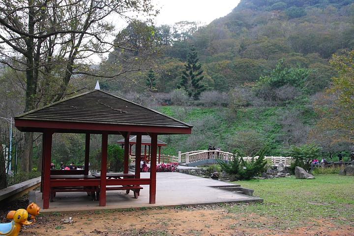 槭林公園001