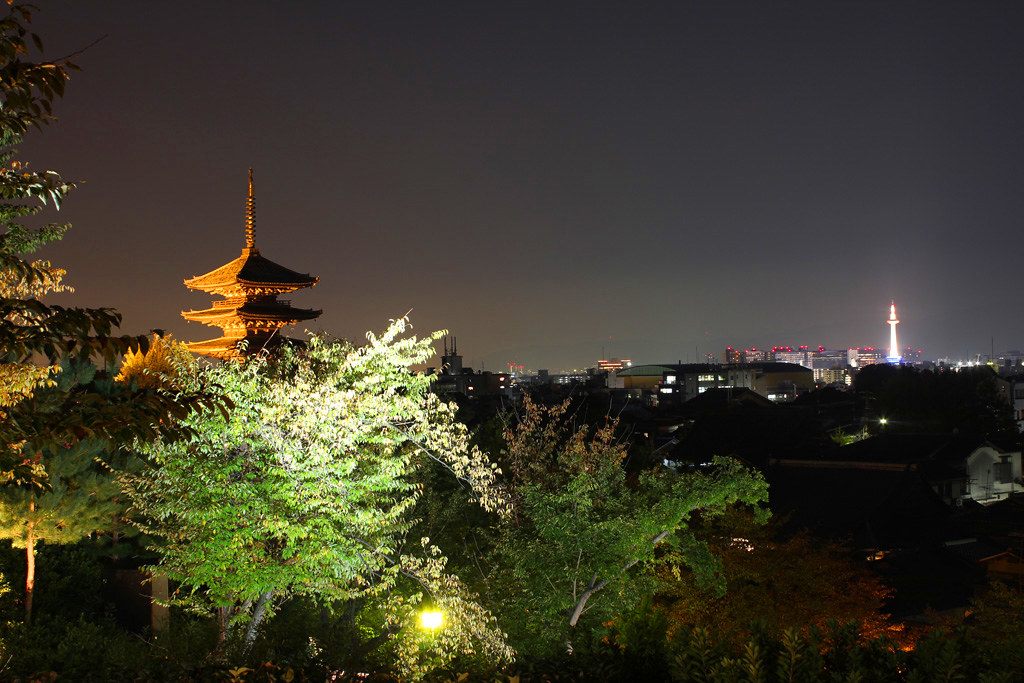 Kyoto, the city of Japanese traditions and culture Part1 (18)