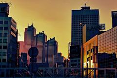 [フリー画像] 建築・建造物, 都市・街, 高層ビル, 夕日・夕焼け・日没, 日本, 東京都, 201012191700