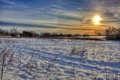Winter Landscape 01 (René Eriksen) Tags: winter landscape denmark december hdr potofgold platinumheartaward