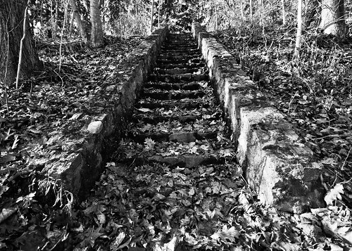 Stone Staircase with leaves (B&W)