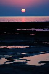 لآ غرد آلصبح آبدآ بك عنآويني .. لاغآبت (آلشمس) كنت تدق بيبآني (★Ᾰΐΐα-7αseβκ) Tags: sunset red sea beach sunrise sand nikon alla doha qatar d90 7asebk