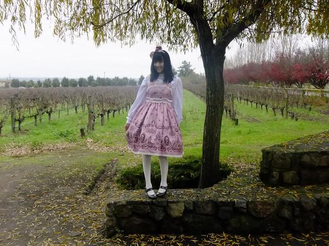 Grape Fields!