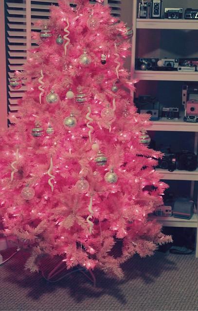 Christmas 2010_8