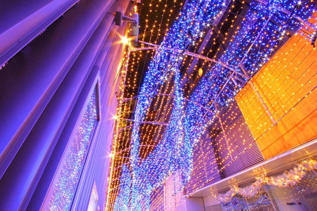 Shinjuku Xmas illumination 2010 (9)
