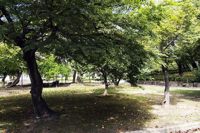 100918_104732_清州公園