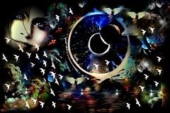 Hubo un  tiempo de preguntas en el pecho... habrá un tiempo de penumbras en el alma... (conejo721*) Tags: iris argentina lago ojo amor pájaros cielo palomas humo palabras mardelplata planeta poesía poema sentimientos rostrodemujer conejo721