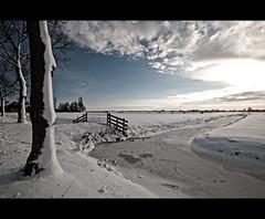 Winter landscape (Explore #8!) (Focusje (tammostrijker.photodeck.com)) Tags: winter sun snow cold holland ice netherlands dutch fence landscape meadow zuid 2010