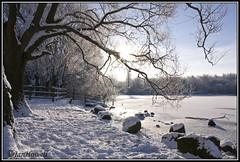 walk in the park (Janice Howell) Tags: christmas winter sun snow ice water field female canon manchester frozen aperture flash dslr wonderland depth pennington flickraward