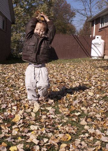 More Leaf Throwing!