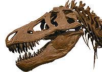 200px-T-Rex2