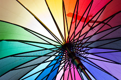 Anybody out there? 2|3 (daitoZen) Tags: light shadow color colour silhouette umbrella advertising photography licht rainbow fotografie pentax reptile ad lizard farbe paraguas schatten primary catchy farbig bunt ombrello parapluie eidechse regenschirm schirm umris    k20d onsalegi