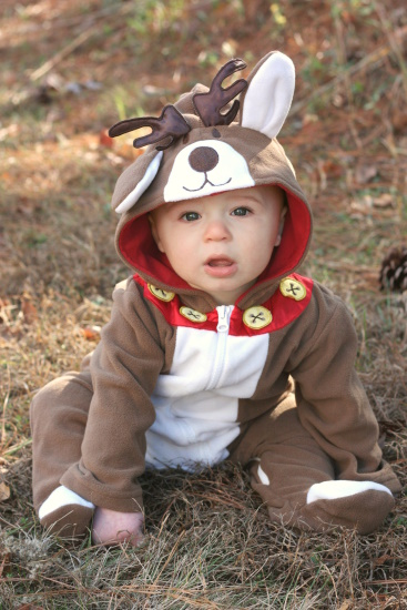 Reindeer - earflop