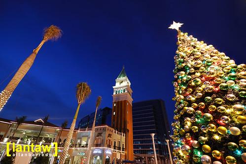 Piazza Christmas Tree