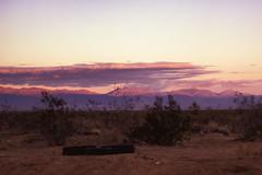 A winter glimpse of the Mojave Desert (Maureen Bond) Tags: ca pink winter light sunset mountains clouds twilight rocks shadows purple desert roadtrip brush tires dirt mojave bushes maureenbond