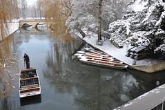Frozen River Cam
