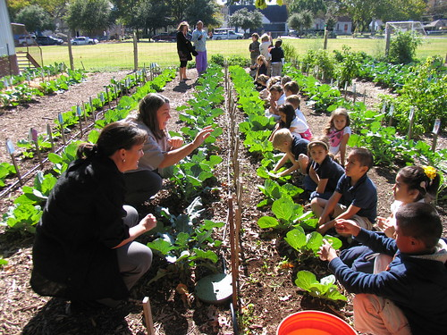 Deputy Regional Administrator Karen Twitty and sign language translator interact with the hearing impaired children as they measure their cabbage plants.