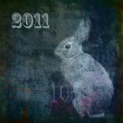 2011 is the year of the rabbit (Irene2005) Tags: square explore happynewyear yearoftherabbit 2011 18200mmvr nikond80 texturebylesbrumes thisismyrabbit helivesundermyfrontporch andnotbyhimself lastdayof2010 ihaveusedmyoldimageforthat