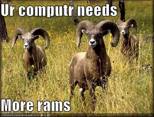 computer-needs-more-rams-field