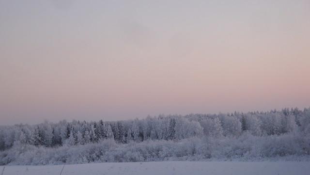 MÖKSÄLLÄ 2010-2011 105