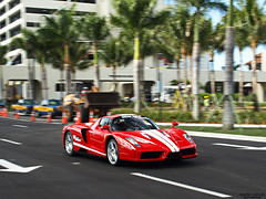 Enzo (Exotic Car Life) Tags: fast palmtrees enzo loud supercar hardrock sportscar exoticcar ferrarienzo redferrari rarecar 1of399 toyrally