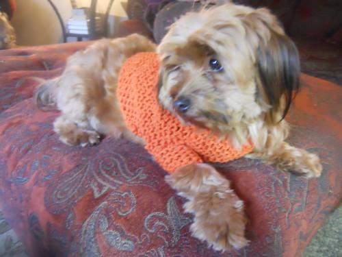 knitting 130