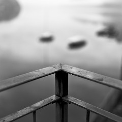 Day 229/365 (marco|g) Tags: blackandwhite bw lake monochrome 35mm canon lago switzerland ticino rail lugano ceresio project365 ef35mmf14lusm 5dmarkii