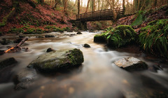 Rolling under the bridge (Jo_Krazy) Tags: longexposure trees green water canon woods stream stones tripod foliage boulders 106 grad 60d 03nd