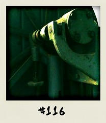 "#DailyPolaroid of 11-1-11 #116 • <a style=""font-size:0.8em;"" href=""http://www.flickr.com/photos/47939785@N05/5354135580/"" target=""_blank"">View on Flickr</a>"