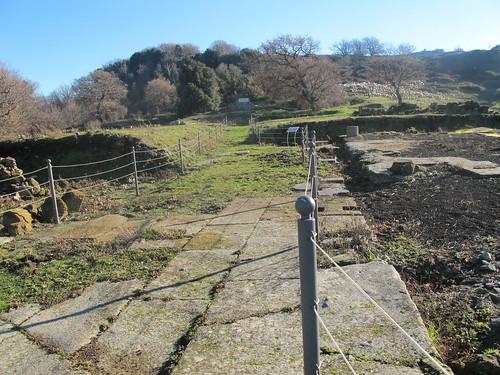 Parco del Tuscolo - Anfiteatro e Scavi