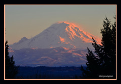 DSC_4247_1_72 - Mount Rainier with a Rosy Glow at Dusk (BTerryComptonPhotography) Tags: b sunset landscape glow compton mount rainier terry rosy natuer bterrycompton