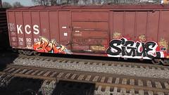 Ewok Sigue (Bench Warrant DVD) Tags: train bench graffiti ewok msk hm freight sigue benching