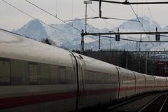 Eiger - Mönch - Jungfraujoch - Jungfrau und ICE im Bahnhof Thun im Kanton Bern in der Schweiz (chrchr_75) Tags: hurni christoph schweiz suisse switzerland svizzera suissa swiss kanton bern berne berna bärn kantonbern chrchr chrchr75 chrigu chriguhurni eiger bergeiger albumeiger alpen alps berg mountain chriguhurnibluemailch 1101 januar 2011 januar2011 albumzzz201101januar hurni110118 ice intercity express db deutsche bahn albumbahndbice1inderschweiz hochgeschwindigkeitszug reisezug albumbahnenderschweiz eisenbahn mönch kantonwallis kantonvalais montagne berner oberland albumdreigestirneigermönchjungfrau dreigestirn jungfrau montagna