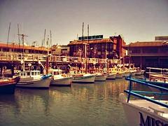 """Call me Ishmael"" (SarahBelle17) Tags: bay bayarea nature sea boat sail sailboats mast deck dock tied color sky reflection harbor voyage amateur sanfrancisco travel buildings old"