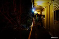 Alone in the Dark (@acastellonm) Tags: francia france alone dark motel darkness she ella chica sola soledad oscuridad oscuro arbol tree hotel