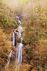 November (E.L.A) Tags: longexposure travel november autumn orange tree fall nature water yellow rock vertical forest season outdoors photography waterfall natural nobody change fallingwater blurredmotion colorimage