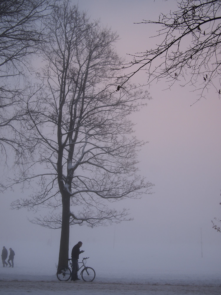 meadows in the snow and mist-7