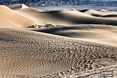 Shifting Sands II (Al Perrette) Tags: park death sand dunes national mesquite valley alperrette blinkagain