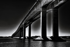 [Free Image] Architecture/Building, Bridge, Black and White, 201012090500