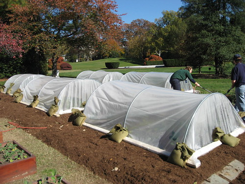 Completed hoop houses at the White House garden.