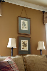 Oak leaf botanical prints above sofa - autumn decorating (kizilod2) Tags: autumn brown green art fall leaves leaf oak sofa decorating michaux picturehook