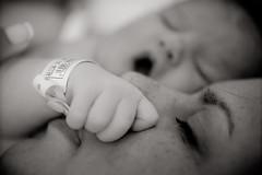 Ana Clara (Marcio Norris - Fotografia) Tags: newborn bebe regina anaclara recemnascido flickraward