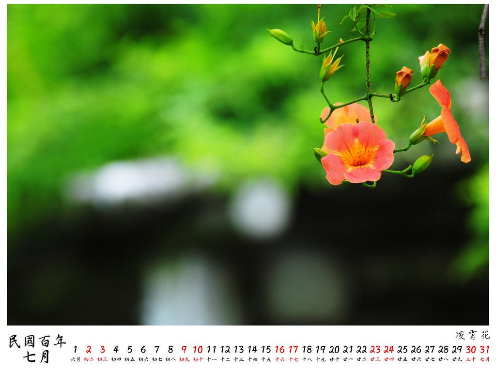 2011 桌曆4 7月