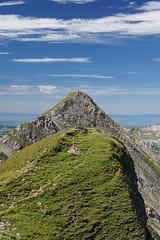 brienzer rothorn (twicepix) Tags: mountains alps green schweiz switzerland swiss berge alpen landschaft gebirge berneroberland rothorn brienzerrothorn twicepix