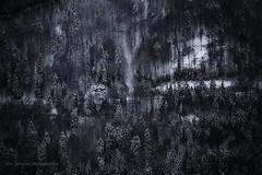 The spirit of The Vosges (cliccath) Tags: winter mountain snow france landscape hiver neige paysage lorraine marche vosges hillwalking sigma70300mmf456dgmacro retournemer larochedudiable canoneos5dmarkii xonruptlongemer cliccath ~explore~ cathschneider spiritofthevosges lespritdesvosges