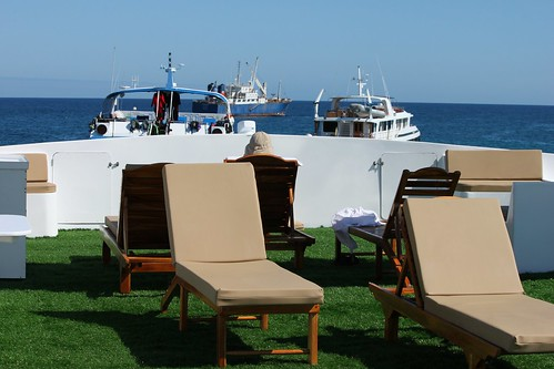 We boarded our yacht Galaxy in Puerto Ayora harbour at noon and relaxed ...
