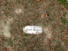 Aunt Mary (bartholmy) Tags: friedhof fallleaves abstract cemetery graveyard leaves virginia moss tombstone laub richmond minimal autumnleaves va marker ontheground minimalism grabstein bltter gedenkstein unten moos abstrakt boden herbstlaub gravemarker jacksonward minimalismus gilpincourt shockhoehill shockhoehillcemetery
