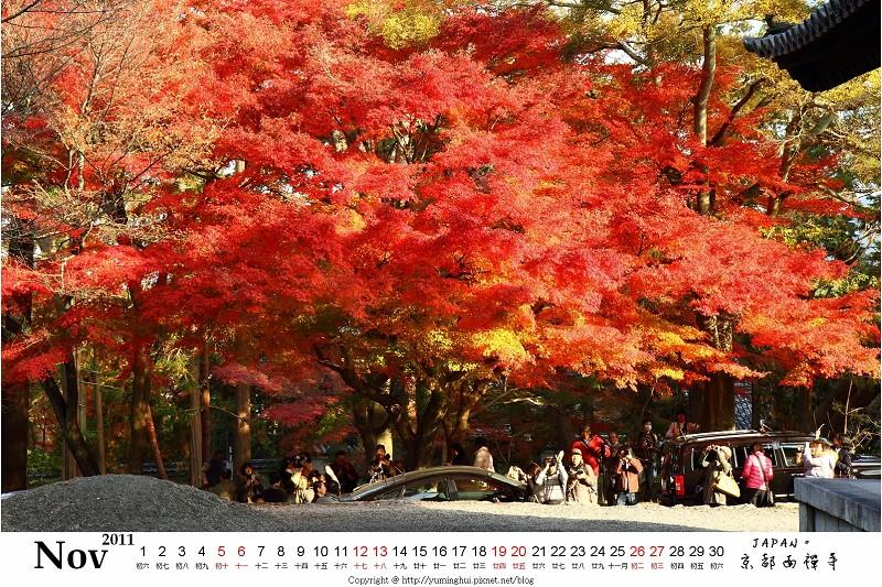 京都 11月