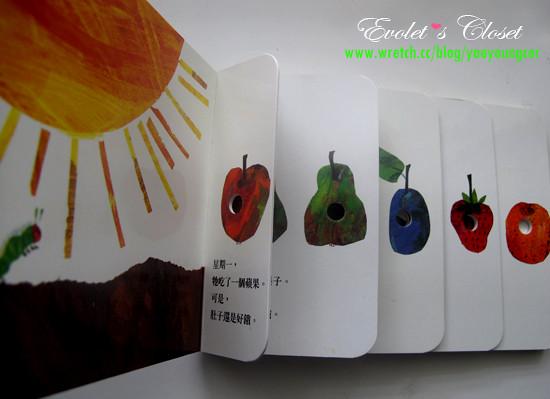 IMG_0986 bookcase