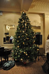 Christmas Tree (crwilliams) Tags: date:month=december date:day=15 date:hour=17 date:wday=wednesday date:year=2010